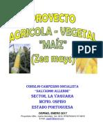 Proyecto Cereales_Maíz Consejo Campesino Socialista Salvado Allende Ene_2017 COMPLETO
