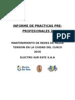 Informe de Prácticas Pre 2