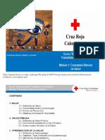 Enfermedades Transmitidas Por Vectores. Cruz Roja.