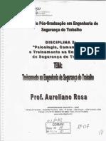 Psicologia Comunicação e Treinamento Da Engenharia Do Trabalho
