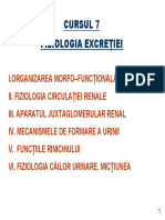 Curs 7 BFKT Excretia 2013 (1)