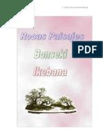 Bonsáis - Rocas Paisajes