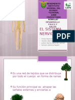 el sistema nervioso exposision salud
