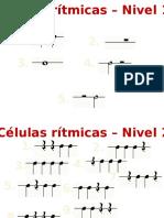 Celulas rítmicas
