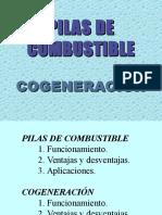 pilasdecombustible-cogeneracin.ppt
