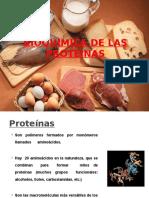 Bioquimicadelasproteinasyaminoacidobioq i 111004182520 Phpapp01