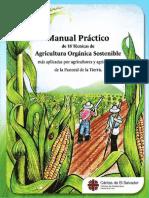 Manual_practico_de_18_tecnicas_de_agricultura_sostenible_caritas_zacatecoluca.pdf
