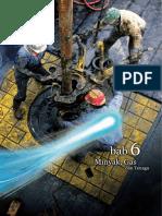 Petroleum Msia.pdf