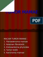TUMOR MAMAE.ppt