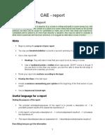 CAE Report
