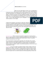 Escrito Sobre Célula Vegetal y Sis-urinario