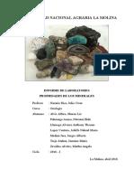 informe 1 Propiedades de las rocas.pdf