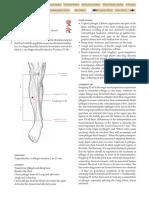 ST-40.pdf