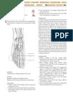 ST-43.pdf