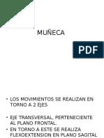 Muñeca Biomecanica