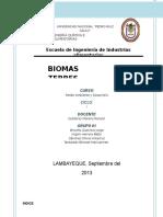 BIOMAS TERRESTRES (1).docx