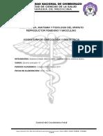 Control Del Crecimiento Fetal Alulema Barros Bastidas Cisneros