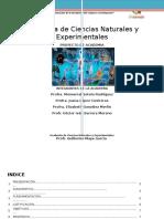 plan academia ciencias naturales y  experimentales 2016  1