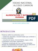 Nutricion en El Ser Humano