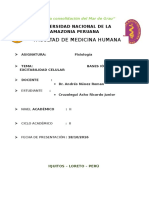 Informe de Fisiologia - Bases Iónicas de La E.C[1]