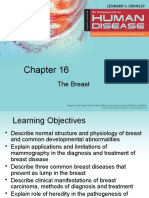 The Breast 16