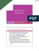 BIO149 Molecular Genetics