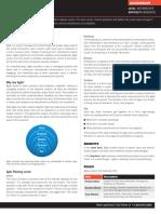 Agile Executive Summary.pdf