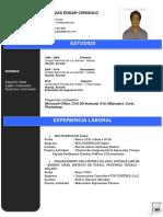 CV - modelo curriculum Vitae