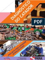 DIAGNOSTICO CATADOR.pdf