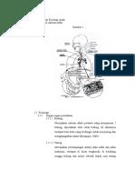 Anatomi Dan Fisiologi Anak PNEUMONIA