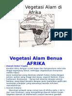 Daerah Vegetasi Di Afrika Dan Penjelasan