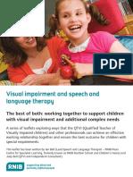 VI_and_speech_therapy.pdf