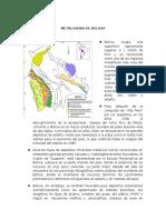 TEMA 11 Metalogenia de Bolivia