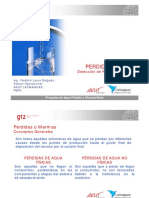 PitometContPerd_VL.pdf