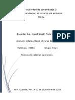 Olivares Orlando Act3
