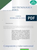 UNIVERSIDAD TECNOLOGICA DE CALAKMUL