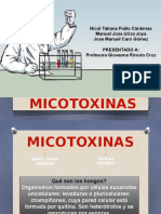 Micotoxinas.pptx