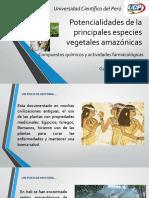 Potencialidades de La Principales Especies Vegetales Amazónicas
