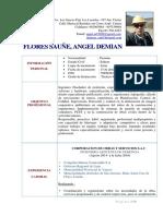 Cv Angel Flores