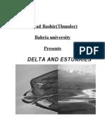Delta and Estuaries