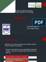 Miologia Seminario