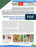Mal de machete InfoCacao_No11_Dic_2016.pdf