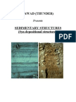 Sedimenatary Structures(Syn Depositional