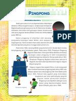 13 Pingpong