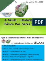 Celula Unidade Basica Vida 01