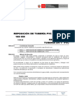 1300.a.B Reposicion de Tuberia PVC_19.01.17