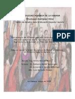 Estrategia de Alfabetización Informacional para.pdf