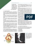 Sindrome Della Plica Sinoviale