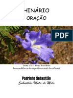 Padrinho Sebastiao - Oracao - Tablet