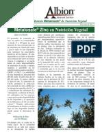 MetalosateNewsSP2003Junio-v4n2.pdf